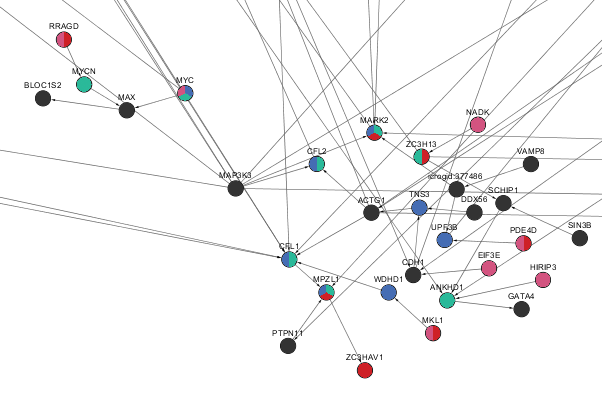 Salmonella network zoomed